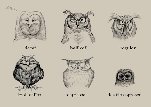Semi-anthropomorphic sketches of six owls, each with a different         facial expression and labeled with the name of a different         coffee-related beverage: decaf (asleep), half-caf (awake, but         not happy about it), regular (a little more awake and still         not happy about it), Irish coffee (cheerfully buzzed),         espresso (unable to blink), double espresso (oh dear, it's         gone all the way to knurd).